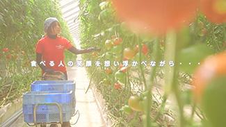 「想い」の見える野菜を大切に。(2分48秒)