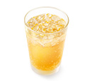 瀬戸内産ネーブル&レモンジンジャーエール(ネーブル果汁0.4%、レモン果汁0.2%使用)