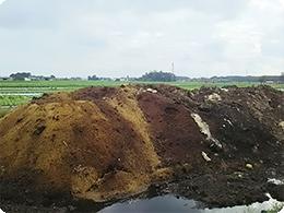 左側が今年、右側が1年過ぎた堆肥
