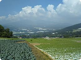 菅平高原の風景