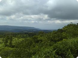 遠くに青森の街を望む、沖揚平の風景