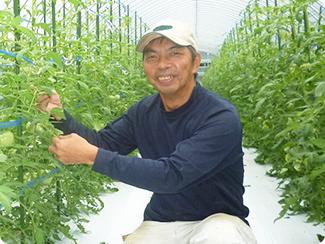 熊本県八代市 株式会社モスファームマルミツ(トマト) 代表取締役社長 満島 清志さん