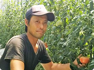 広島県庄原市 JA庄原高野町野菜組合とまと部会(トマト)代表生産者 藤長 友樹さん