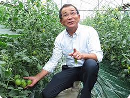 トマトの農法を説明する安藤社長
