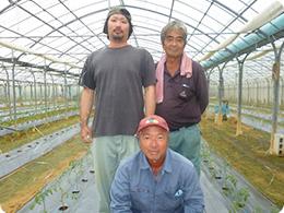 沖縄県トマト生産者の皆さんの写真