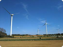 畑の中に立ち並ぶ風力発電のプロペラ群