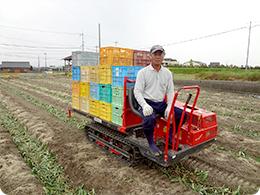 玉ねぎを集荷する運搬車