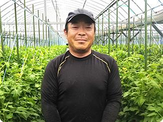 芸北野菜部会 トマト専門部会 部会長 岡本 健さん