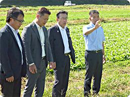 畑を案内する山本さん(右はし)