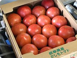 出荷を待つ「かしもトマト」