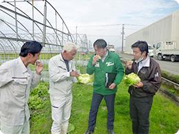 野田さんが栽培したレタスを試食