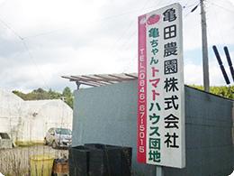亀ちゃん農園のトレードマーク入りの看板